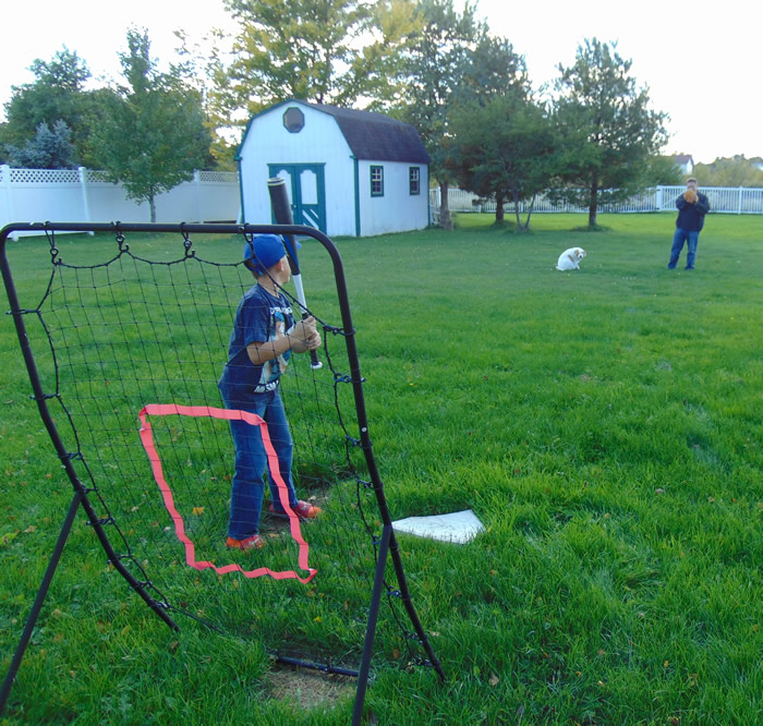 step2-blog-baseball-americas-pastime