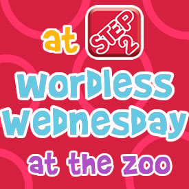 Wordless Wednesdays at the zoo